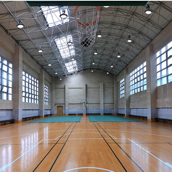 UFO basketball room.jpg